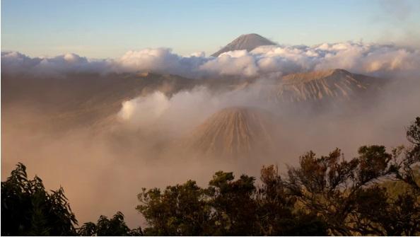 کشف دنیای ژوراسیک در اعماق کشور استرالیا