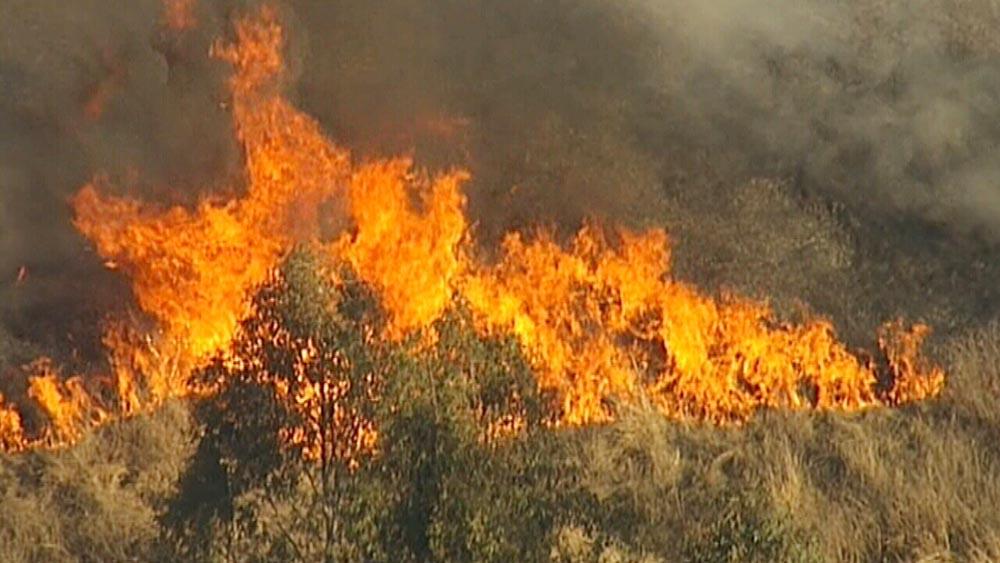تلاش برای مهار آتش سوزی در نیو ساوت ولز