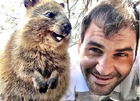 """معجزه سلفی فدرر با شادترین حیوان دنیا برای رونق گردشگری """"پرت"""""""