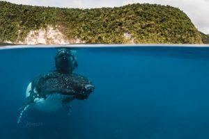 عکاس اهل بریزبین برنده جایزه 170 هزار دلاری هیپا شد