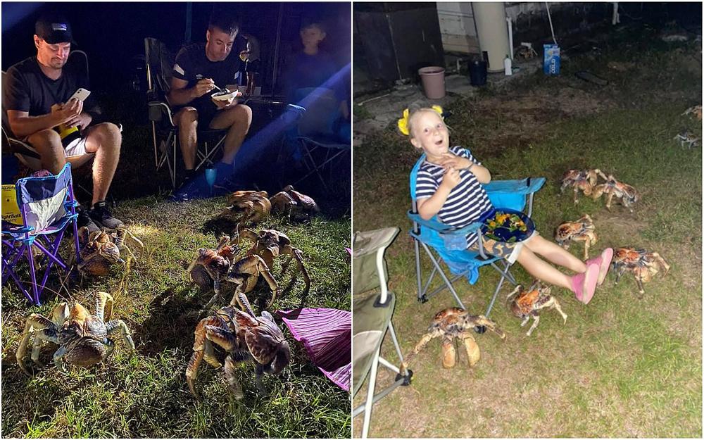 چرخنگهای غولپیکر، مهمانی باربیکیو را برهم زدند!