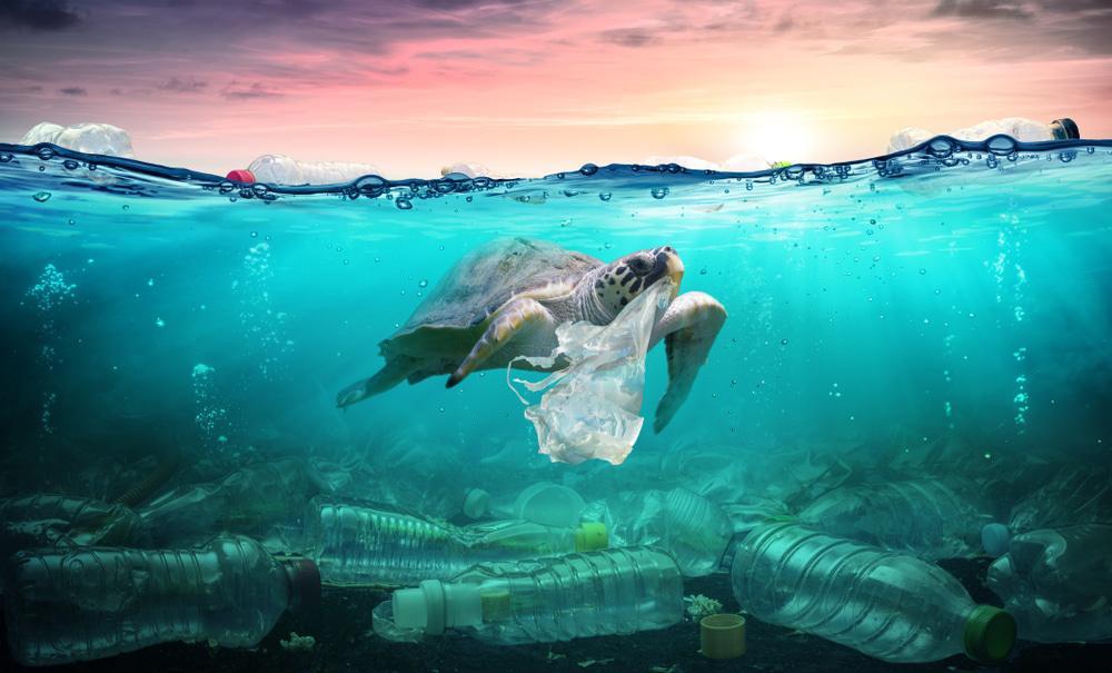 تصویب قانون ممنوعیت استفاده از پلاستیک یکبار مصرف در استرالیای جنوبی