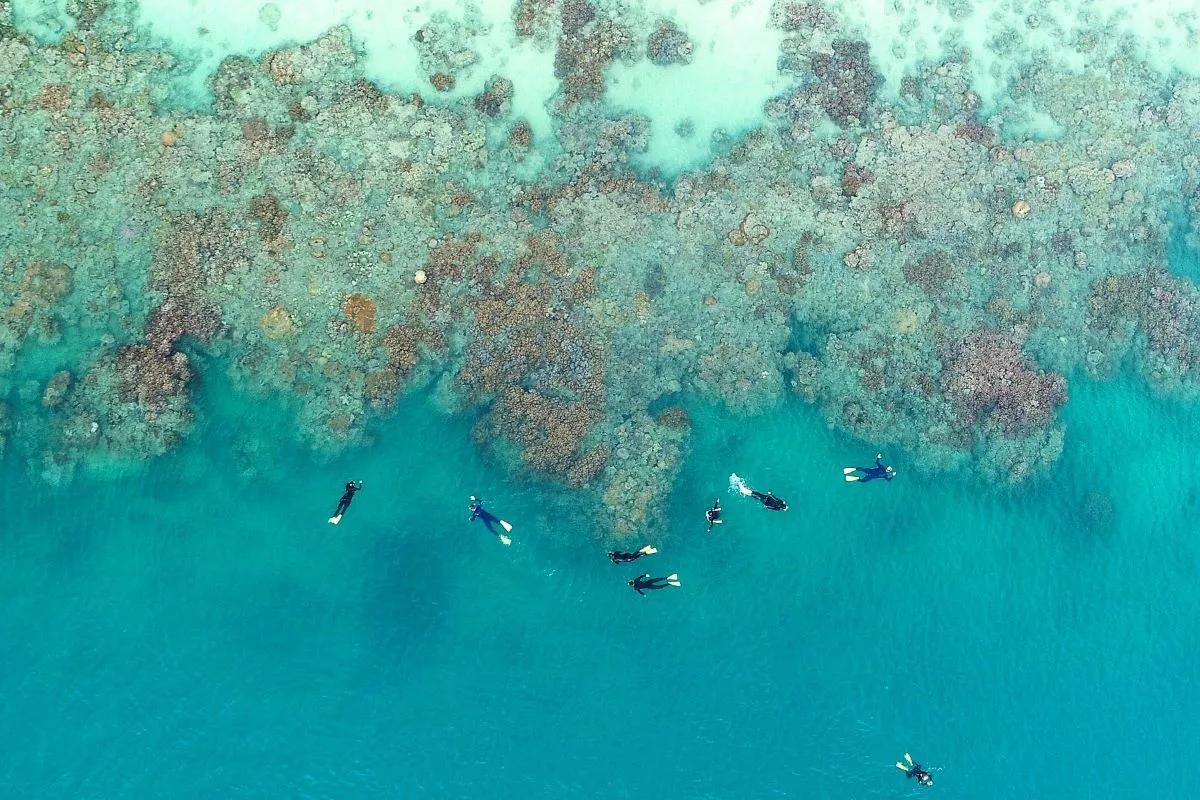 وایت هیون استرالیا، بهترین ساحل جهان در سال 2021 شد
