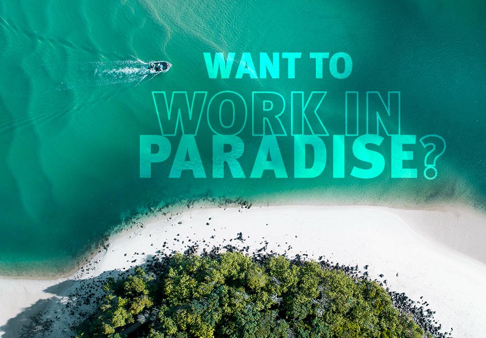 کار در بهشت؛ اعلام فرصتهای شغلی در کوئینزلند