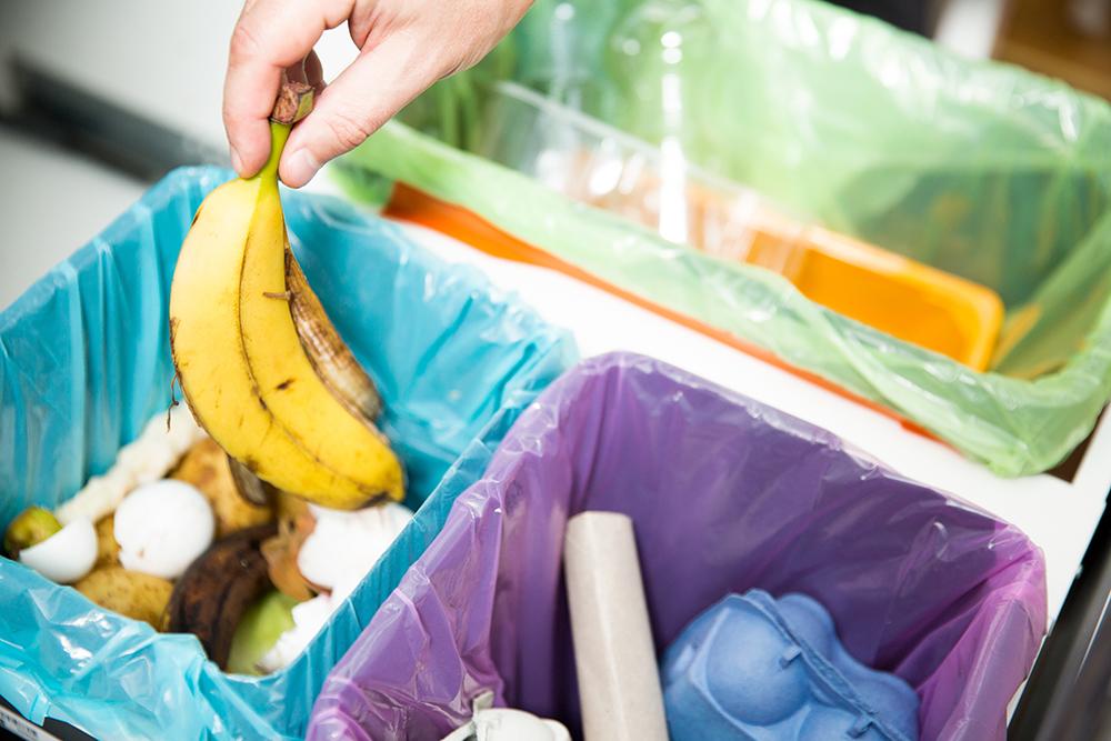هر خانوار نیوساوت ولزی یک سطل پسماند مواد غذایی میگیرد