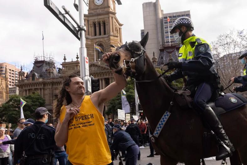دستگیری دو مرد به جرم زدن به اسبهای پلیس سیدنی