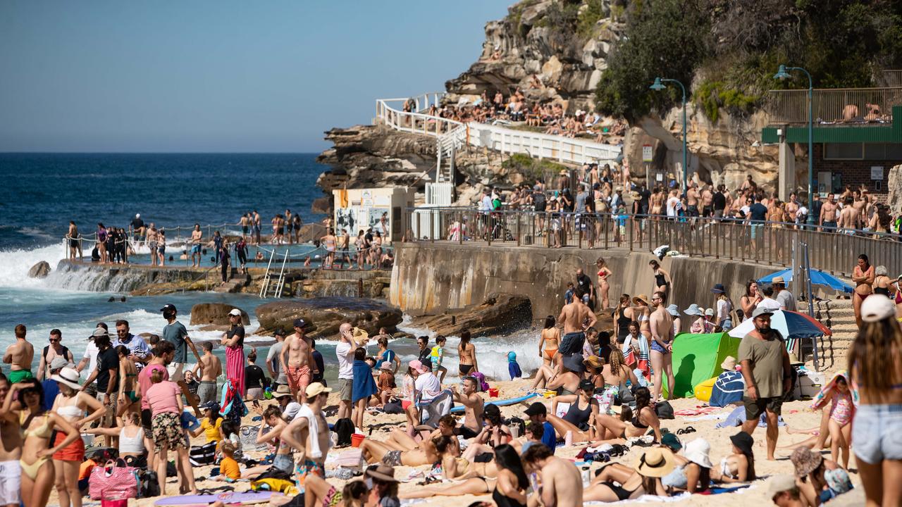 هجوم اهالی سیدنی، سواحل را به تعطیلی کشاند