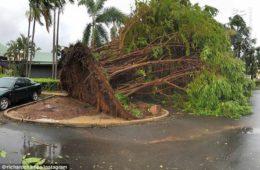 طوفانِ داروین هزاران خانه را در خاموشی فرو برد