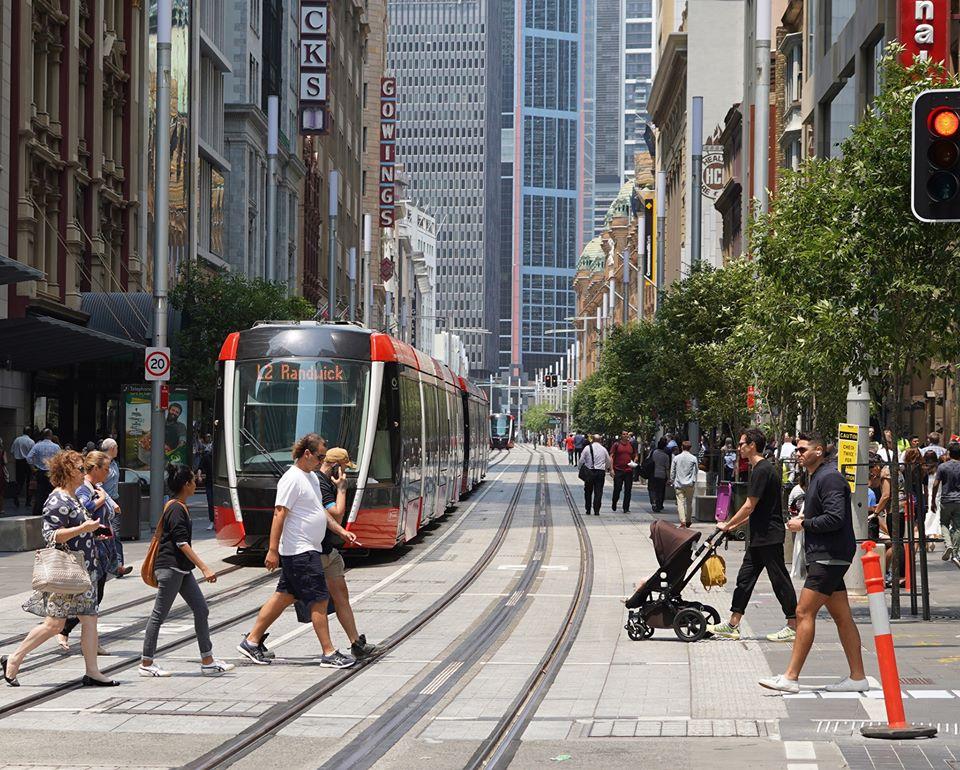 جریمه 160 عابر پیاده در سیدنی به دلیل بی توجهی به خط تراموا