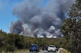 آتش سوزي در جنگل های سیدنی
