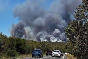 آتش سوزی در جنگل های سیدنی