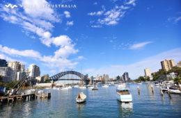 استرالیا رتبه اول در جذب میلیونرها