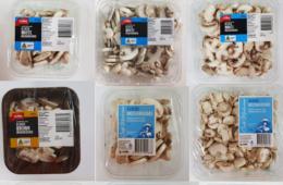 هشدار/ فراخوان برای پس دادن قارچهای آلوده به پلاستیک در استرالیا
