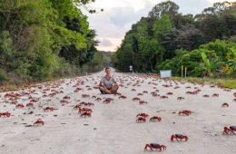 پدیده منحصر به فرد در جزیره کریسمس استرالیا