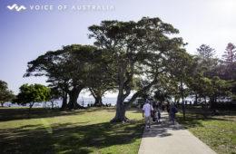 استرالیا یکی از معدود کشورهایی که کمترین میزان آلودگی هوا را دارد