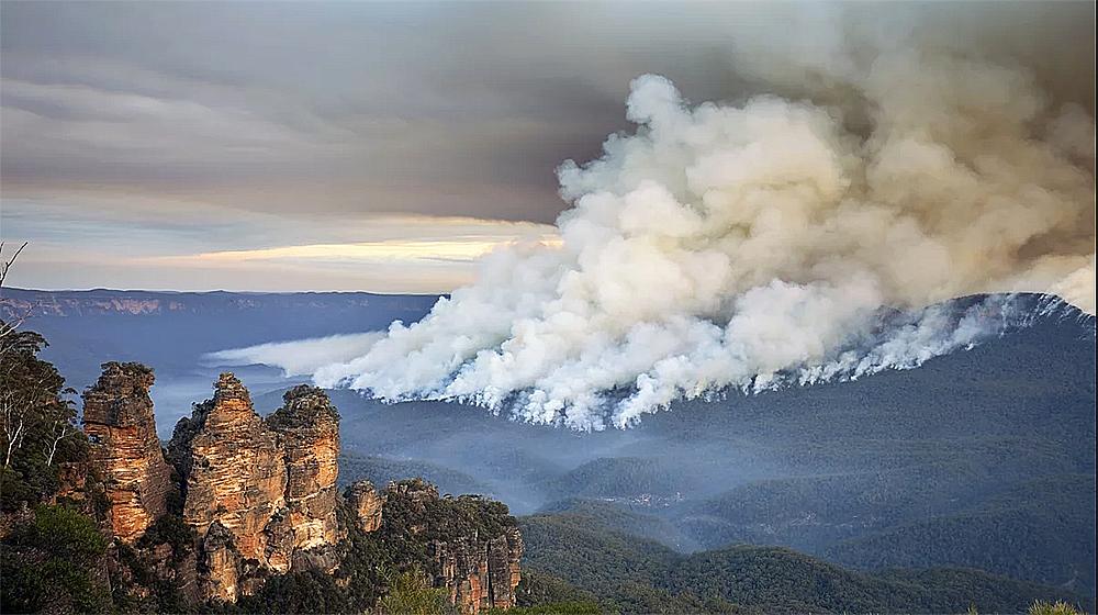 از بین رفتن 80 درصد بلومانتینز و 50 درصد گوندوانا در آتش سوزیهای استرالیا