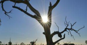 سومین سال گرم استرالیا به ثبت رسید