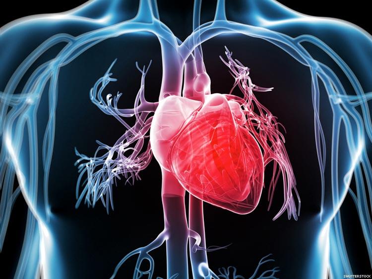 بیماریهای قلبی 13 میلیون استرالیایی را تهدید میکند