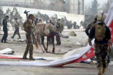 دو کارمند سفارت استرالیا در انفجار کابل زخمی شدند